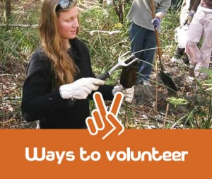 ways_to_volunteer